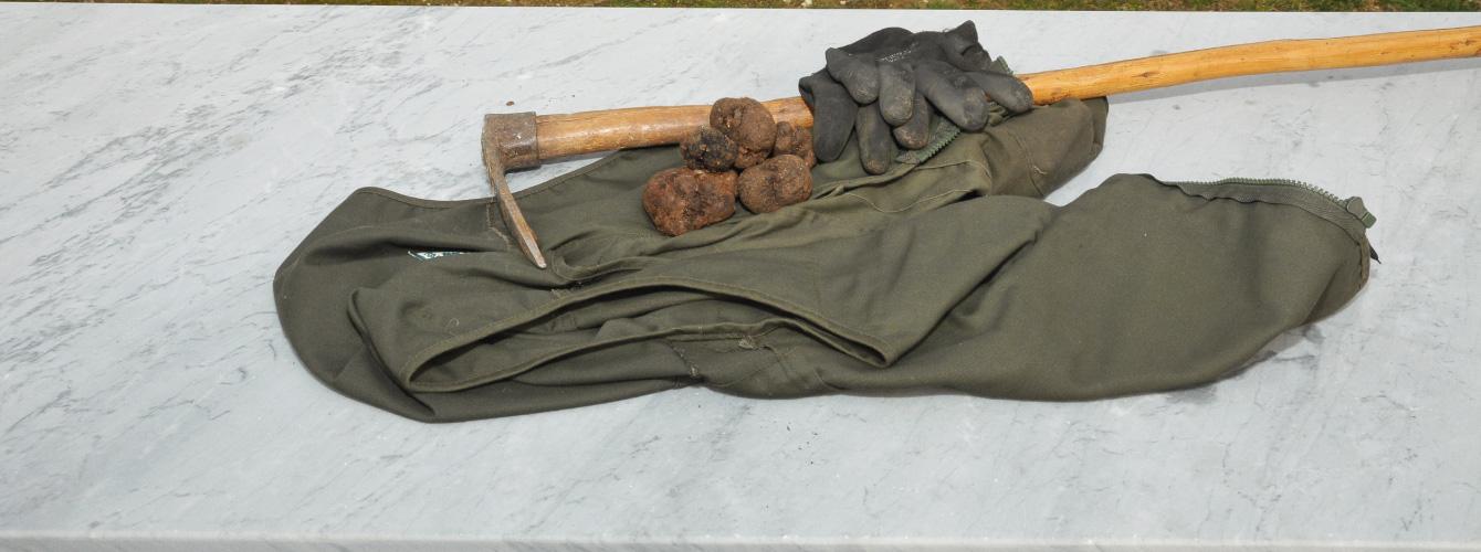 strumenti cavatore di tartufi